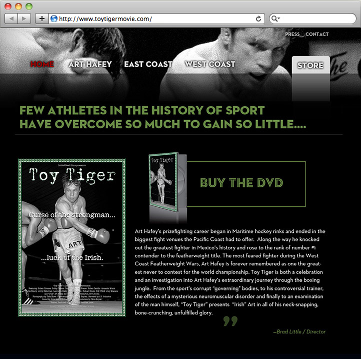 Toy Tiger homepage design